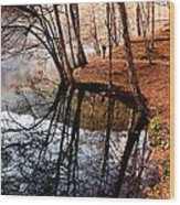 Autumn - 4 Wood Print by Okan YILMAZ