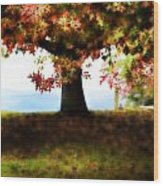 Autumn Acorn Tree Wood Print
