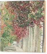 Autumn And Fall Wood Print