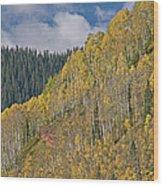 Autumn Aspens San Juan Mountains Wood Print