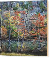 Autumn At Beaver's Bend Wood Print by Tamyra Ayles