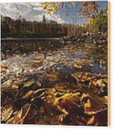 Autumn At Ragged Falls Wood Print