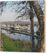Autumn At The Harbor Wood Print by Pamela Patch