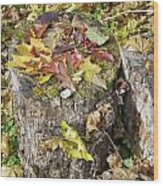Autumn Berries And Leaves  Wood Print