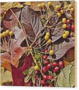 Autumn Berries And Leaves Background  Wood Print