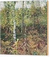 Autumn Birchh Forest Wood Print