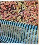 Autumn Blue Bench Wood Print