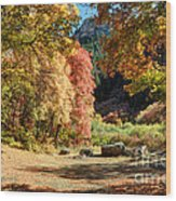Autumn Campground In Blacksmith Fork Canyon - Utah Wood Print