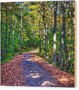 Adirondack Color 53 Wood Print