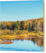 Adirondack Color 54 Wood Print