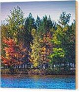 Adirondack Color 63 Wood Print