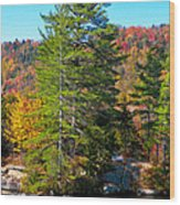 Adirondack Color P8 The White Bench Wood Print