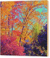 Autumn Colors 13 Wood Print