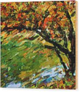 Autumn Colors 2 Wood Print