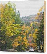 Autumn Colors 3990 Wood Print