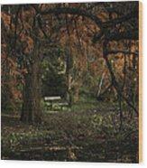 Autumn Colors Wood Print by Akos Kozari