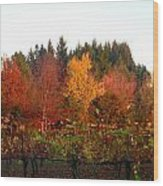 Autumn Colors In The Vineyard Wood Print