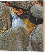 Autumn Colors Reflected In Pool Of Water Wood Print
