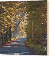 Autumn Country Road - Oil Wood Print