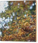 Autumn Crescendo Wood Print