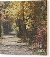 Autumn Dreams With Texture Wood Print