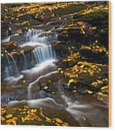 Autumn Falls - 72 Wood Print