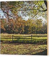 Autumn Field In Pennsylvania Wood Print