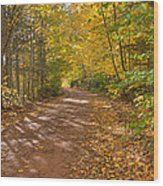 Autumn Foliage On A Country Road Wood Print