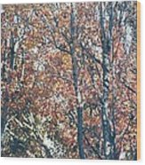Autumn Foliage Wood Print