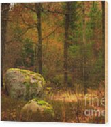 Autumn Forest Walk Wood Print