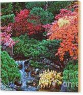 Autumn Garden Waterfall II Wood Print