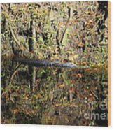 Autumn Gator Wood Print