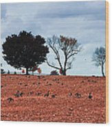 Autumn Geese Wood Print by Bill Cannon
