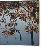 Autumn Gold On The Water Wood Print