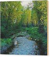 Autumn Hue  Wood Print