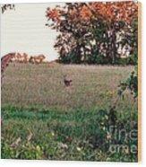 Autumn Hunt Wood Print