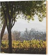 Autumn In A Vineyard Wood Print