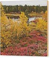 Autumn In Inari Wood Print