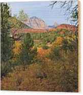 Autumn In Red Rock Canyon Wood Print