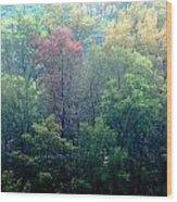 Autumn In Singapore Wood Print