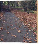 Autumn In St Fagans Park Cardiff Wood Print