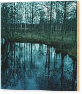 Autumn In Sweden Wood Print