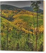 Autumn In The Rockies Hdr Wood Print
