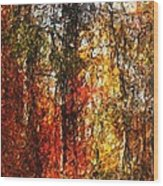 Autumn In The Woods Wood Print by David Lane
