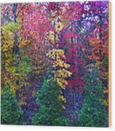Autumn In Virginia Wood Print by Nabila Khanam