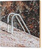 Autumn Ladder Wood Print by David Taylor