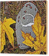 Autumn Ladybugs Wood Print