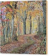 Autumn Lane Wood Print by Heavens View Photography