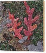 Autumn Leaf Art IIi Wood Print