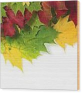 Autumn Leaves In Colour Wood Print